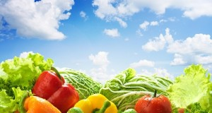 Healthy food landscape against sunny blue sky. Mixed vegetables